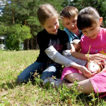 Крупнейшая отраслевая конференция по детскому отдыху КИДПРО пройдет 26–27 октября в Москве