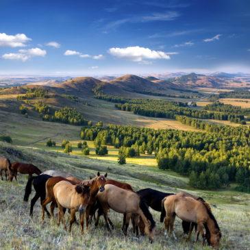 Глава Ростуризма: национальные туристические тропы в России можно создать за один сезон