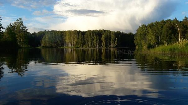 Проект экологического туризма«Большая Валдайская тропа» вошел в отчет губернатора Новгородской области.