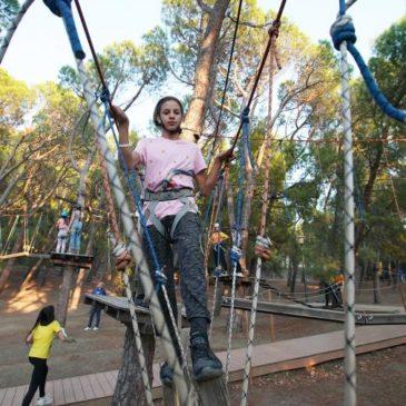Отдыхать некуда: детские лагеря оказались под угрозой банкротства. Если летняя оздоровительная кампания-2020 сорвется, организации лишатся основного дохода